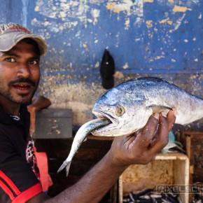 kandy-sri-lanka-5-markt