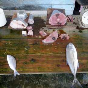 karunas-cooking-class-galle-unawatuna-13