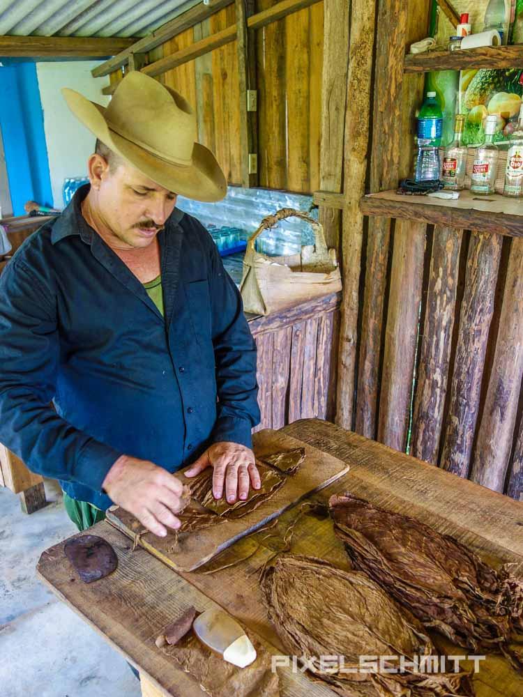 Viñales Kuba Zigarren drehen