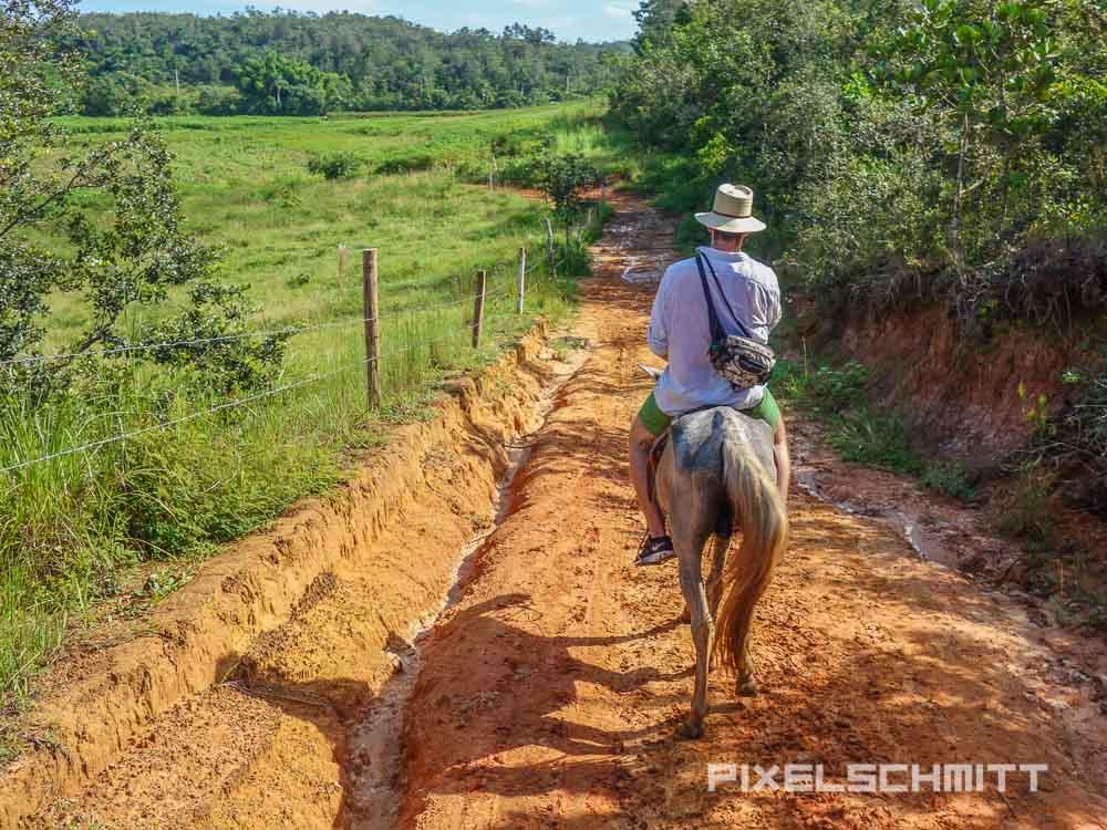 Mit dem Pferd durch Viñales