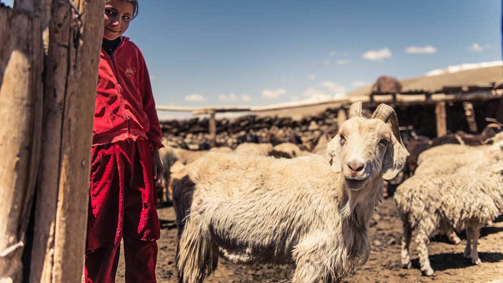 Einsame Hirten leben mit ihren Familien im Zorkul - Foto: www.kilianreil.com