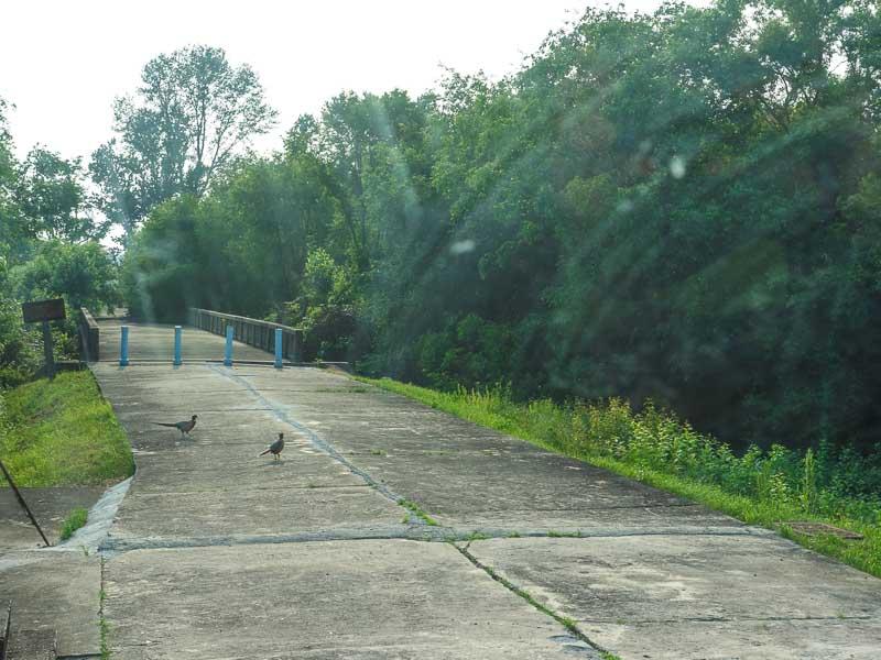 nordkorea-dmz-panmunjom-bridge-of-no-return