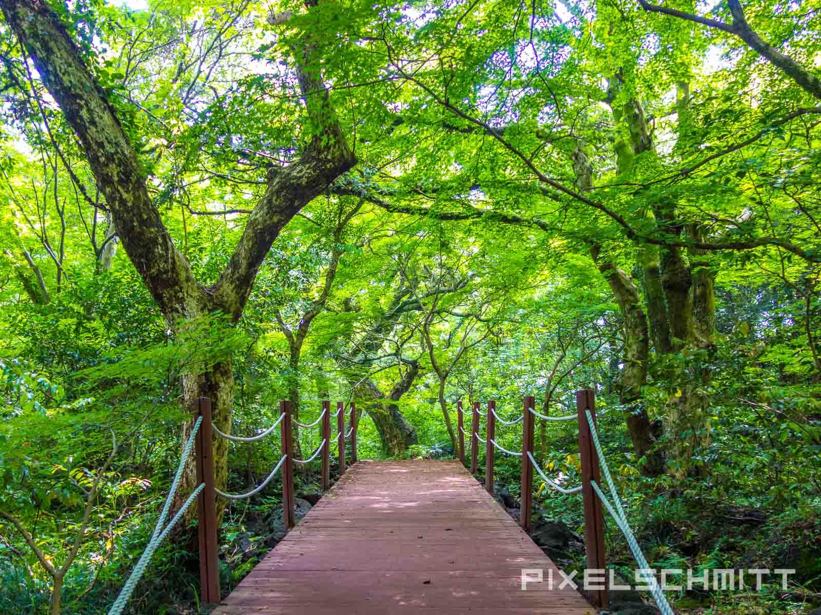 Jeju Island Südkorea