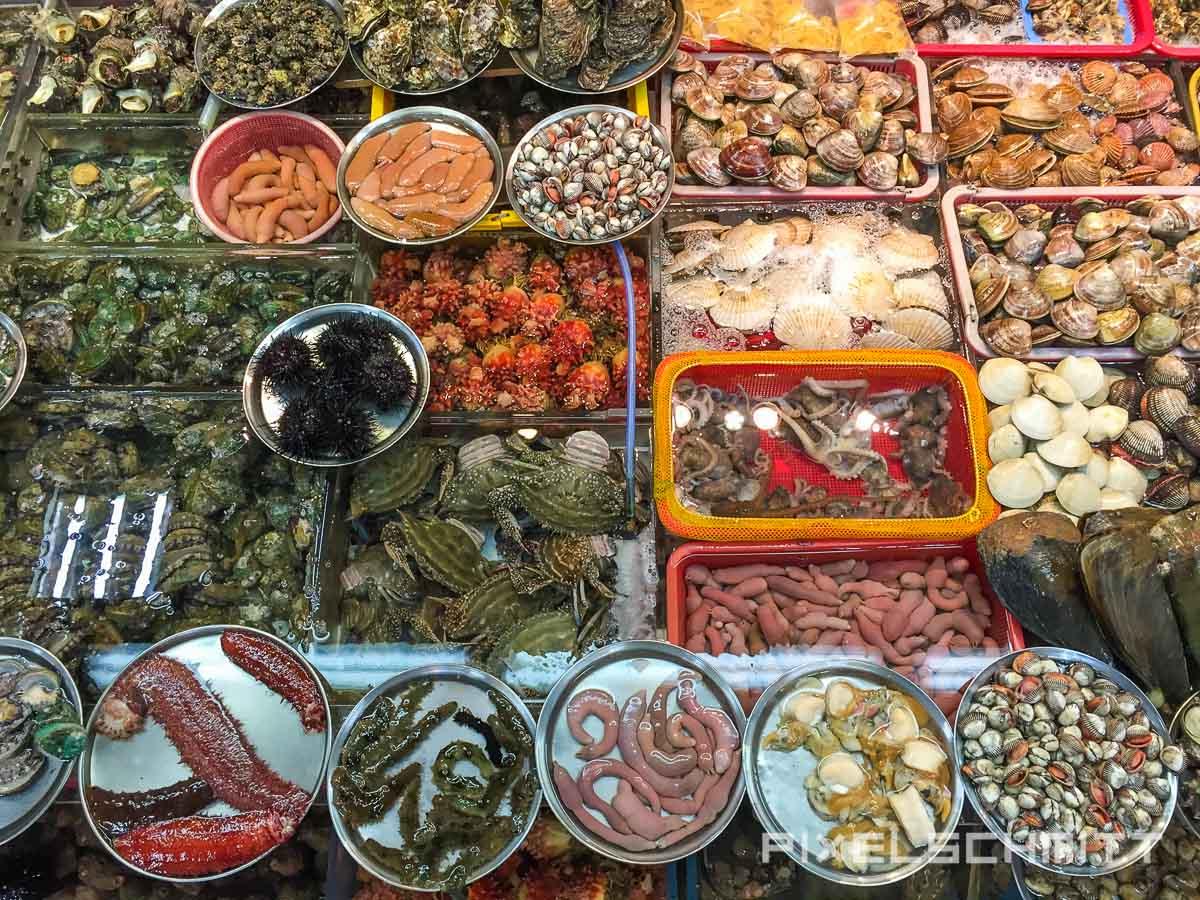 Fischmarkt Busan enorme Vielfalt