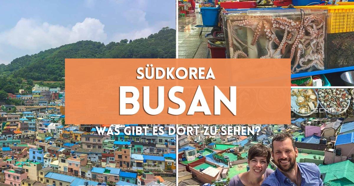 Busan in Südkorea Fischmarkt