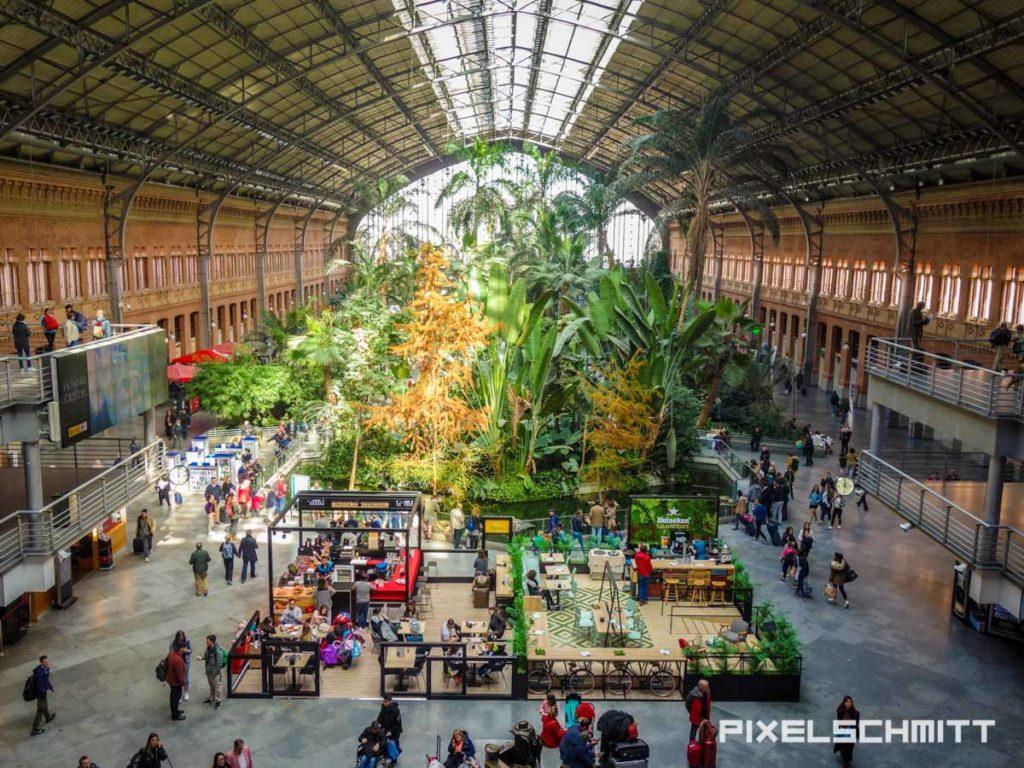 Palmengarten im Bahnhof Madrid Atosha
