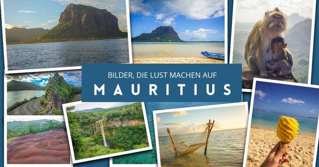 Bilder aus mauritius