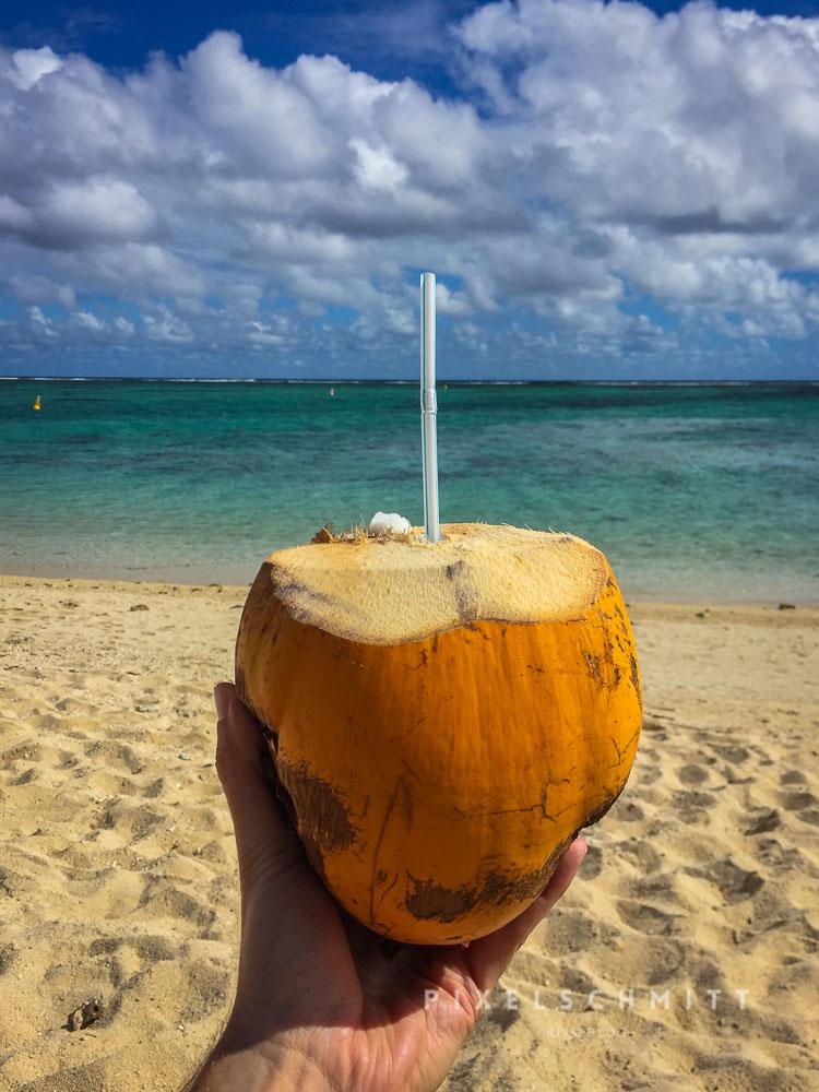 Kokosnuss am Strand von Mauritius