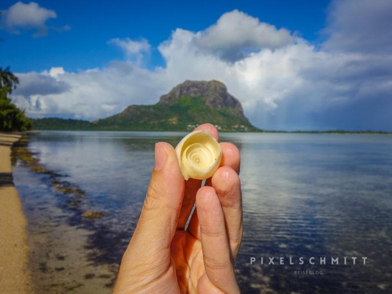 Den kompletten Urlaub in Mauritius kannst du mit Muschel-sammeln verbringen