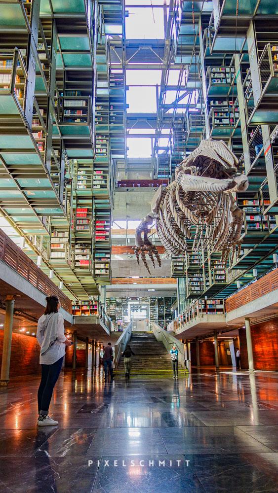 Die Bibliothek Vasconselos in Mexiko-Stadt