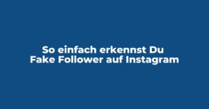 So einfach erkennst Du Fake Follower auf Instagram